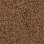 Rocky-Mountain-Brown-_RB4701